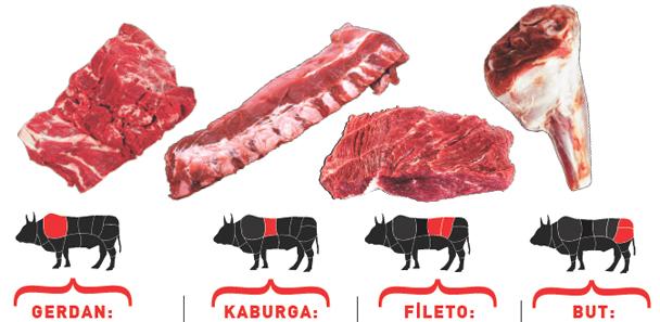 etin-temel-bolumleri2